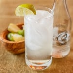 Elderflower Gin and Tonic
